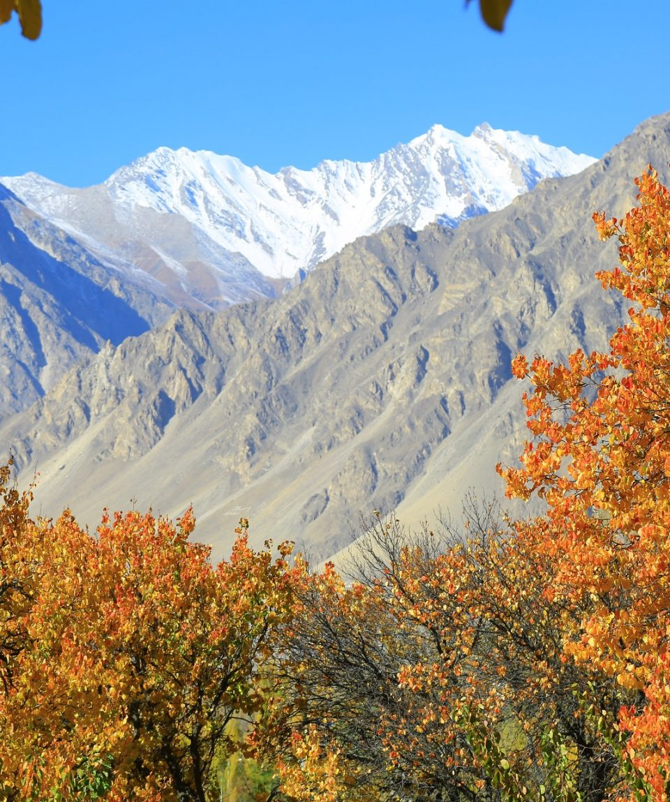 Autumn in Hunza HDT